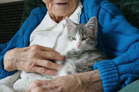 elder_women_with_cat